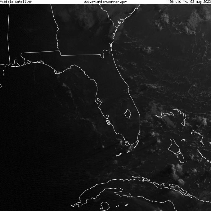 GOES - visible - Tampa Florida